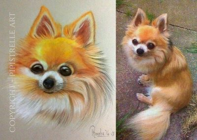 Busby & Photo Reference