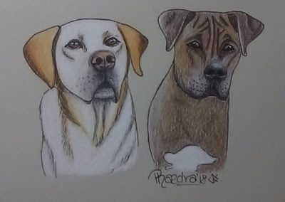 Hunter and Baxter A6 Small Ink and Pencil Illustration