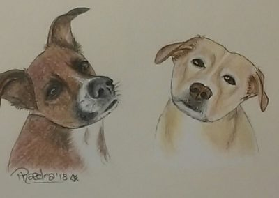 Gracie and Skye A6 Small Ink and Pencil Illustration